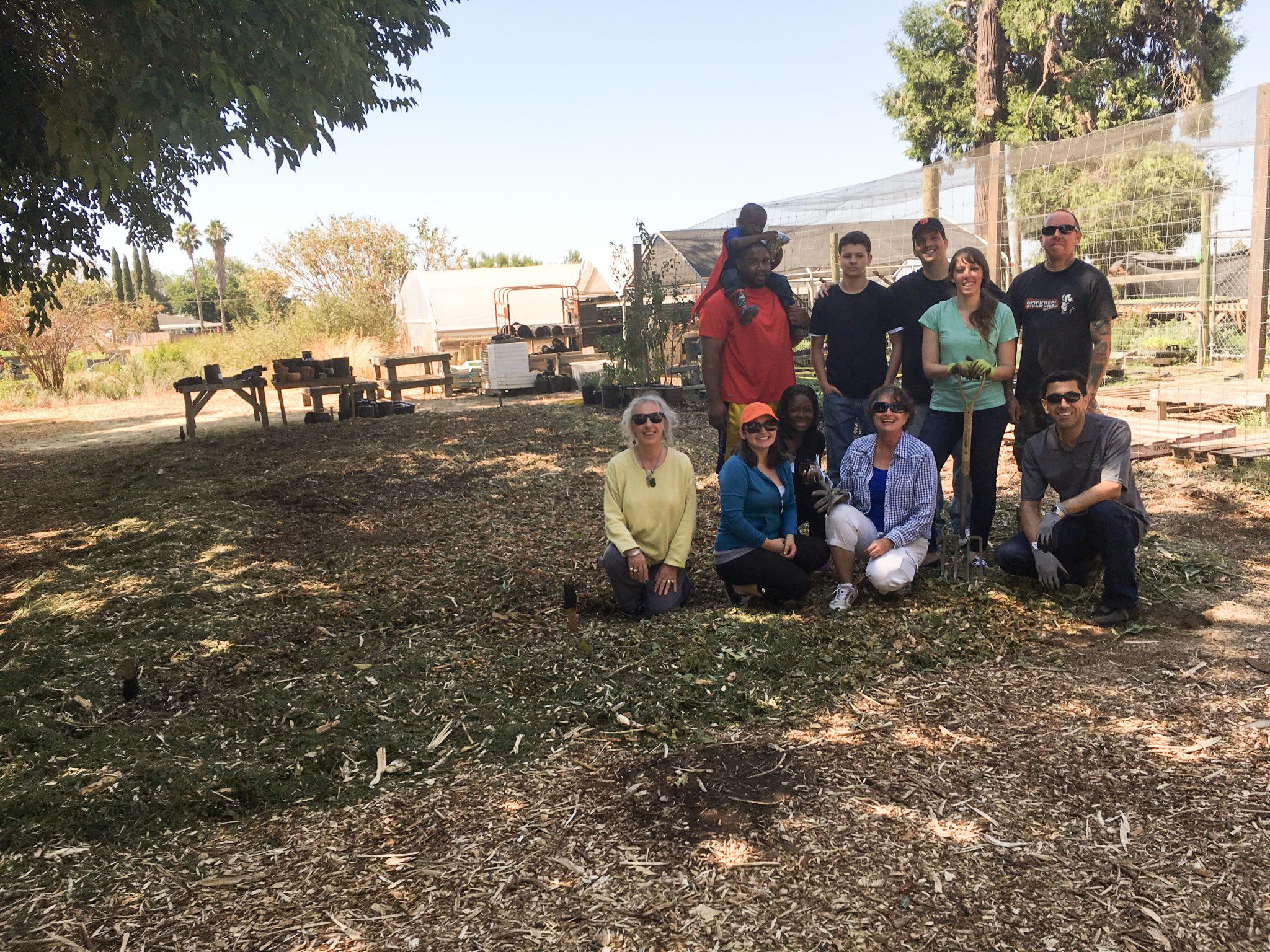 Volunteer day at soil born farms lionakis for Soil born farms